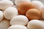 Trứng thế nào mới là trứng sạch?
