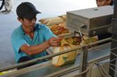 Việt Nam lần đầu thua Thái về xuất khẩu gạo sang Philippines