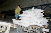 Ai được quyền xuất khẩu gạo theo nghị định mới?