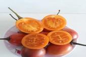 Cà chua thân gỗ 1 triệu đồng/kg hết thời hoàng kim?