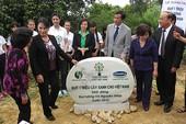 Dâng trồng hơn 13.000 cây xanh bên linh mộ Đại tướng Võ Nguyên Giáp