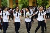 TP.HCM: Điểm văn cao nhất kỳ thi THPT quốc gia là 8,25 điểm