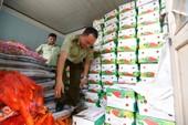 Bị phạt 8 triệu vì chở lậu cà rốt, tỏi Trung Quốc lên Đà Lạt