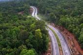 Vụ phá rừng ở Phú Quốc: Tòa tạm dừng để đi xem hiện trường