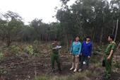Bắt quả tang vụ phá trên 3.000m2 Vườn quốc gia Phú Quốc