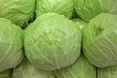 10 thực phẩm giảm cân tốt nhất trong mùa đông