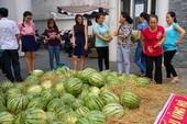 Sau 'giải cứu' nông sản: Cần giải pháp tận gốc