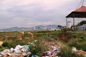 Doanh nghiệp e ngại Khánh Hòa siết dự án du lịch