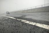 Bộ GTVT: Báo cáo các nhà thầu chây ì sửa chữa hư hỏng