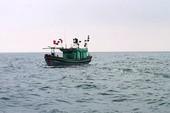 Ngư dân mất tích khi đi trên tàu đánh cá