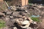 Lén đổ chất thải ra môi trường bị bắt quả tang