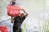 Một ngày vây lưới bắt cá bên cạnh bãi rác Đa Phước