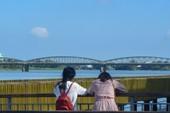 Cận cảnh cây cầu gỗ lim tiền tỉ trước giờ khánh thành