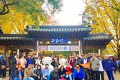 Lần đầu tiên Hàn Quốc cấp visa 10 năm cho người Việt