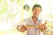 Người dân cù lao Minh bắt được lươn rằn ri kỳ lạ