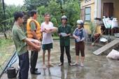 Quảng Ngãi: 6 người chết, mất tích do mưa lũ