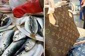 Cụ bà lấy túi Louis Vuitton 1.000USD... đi chợ đựng cá