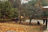 Triều Tiên đào hào gần nơi lính chạy sang Hàn Quốc