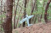 UAV Triều Tiên chụp lén lá chắn tên lửa Mỹ-Hàn