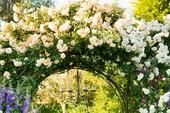 Lối vào nhà vườn thơ mộng với cổng hoa