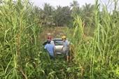 Ôtô tông hàng loạt người thương vong rồi lao xuống sông