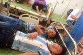 Ong rừng tấn công 15 học sinh và người dân nhập viện