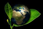 Xây dựng thế hệ trẻ yêu môi trường