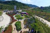 Lan tỏa sắc xanh cho du lịch Việt