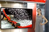 Vui Độc Lạ: 'Fast & Furious' phiên bản... xe đồ chơi