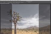 Adobe giới thiệu loạt hướng dẫn Photoshop cực đơn giản