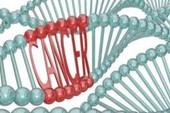 Hà Nội và TP.HCM 'cạnh tranh' số người mắc ung thư