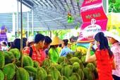 Đến Lễ hội Trái cây Nam bộ mua trái cây vừa rẻ vừa ngon