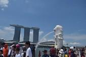 Bị Hải quan Singapore làm khó, hãy bình tĩnh!