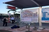 TP.HCM xây mới và cải tạo gần 100 nhà chờ xe buýt