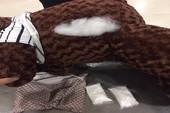 Bắt đối tượng giấu ma túy trong gấu bông tại TSN