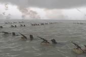 2.000 cảnh sát cơ động diễn tập trên biển