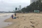 Biển Nha Trang hoang tàn sau bão Damrey