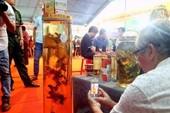Lễ hội tràn ngập sâm củ Ngọc Linh giá 'khủng'