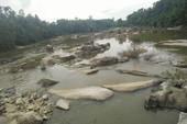 Tắm sông, một thanh niên chết đuối