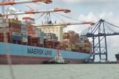 Vét luồng Cái Mép - Thị Vải sâu 15,5 m để đón tàu lớn