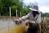 Quảng Nam: Trạm bơm nông thôn mới tiền tỉ 'đắp chiếu'