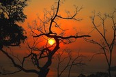 Sơn Trà đẹp ngỡ ngàng trong khoảnh khắc giao mùa