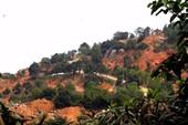 Bộ VH-TT&DL lên tiếng về quy hoạch bán đảo Sơn Trà