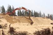 Thủ tướng chỉ đạo làm rõ vụ phá rừng phòng hộ ở Phú Yên