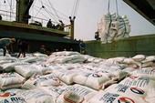 Xác minh việc tốn 20.000 USD xin giấy xuất khẩu gạo