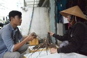 Lo ngại khan hiếm tôm hùm, giá tăng cao
