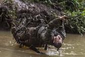 Binh sĩ Mỹ khổ luyện trong rừng rậm Hawaii