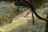 Đạn lạc 400 m, lính Hàn Quốc thiệt mạng gần biên giới