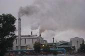 Trồng rau gần khu công nghiệp: Coi chừng ung thư