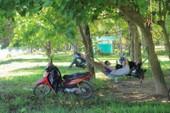 Người dân Huế ra sông Hương tránh nắng